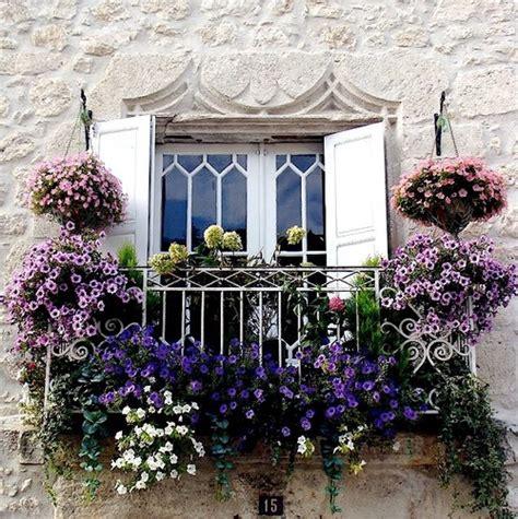 fiori da balcone estivi fiori da balcone estivi guida ai pi 249 bei fiori colorati