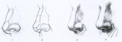 imagenes de narises a lapiz dibujoespol dibujo espol