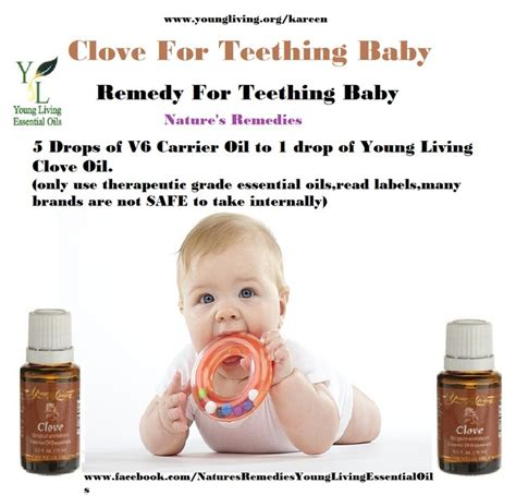 7 Uses For Baby by Top 25 Ideas About Baby Teething Oils On Clove