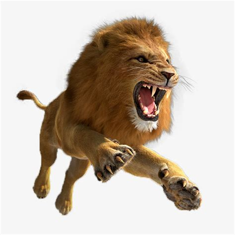 roaring lion png www pixshark com images galleries
