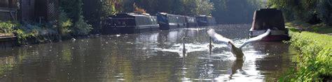river thames boat trips oxford river thames