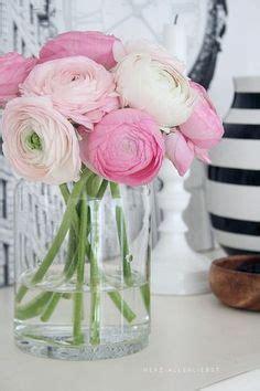 Blume Mit Rosa Blüten by Gloxinien Fotos Sinningia Blumen Bilder Rote Bl 195 188 Ten