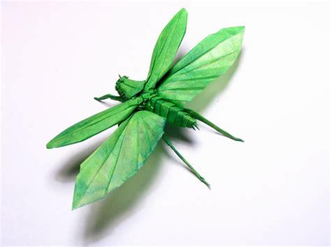Aufkleber Von Papier Lösen by Insectes R 233 Alistes En Une Feuille De Papier