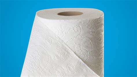 Best Toilet Paper For Plumbing by Choosing The Best Toilet Paper For Finicky Plumbing