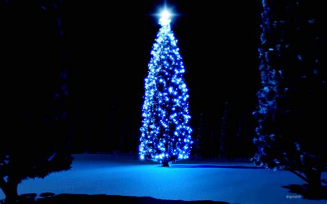 christmas tree hd wallpapers hd wallpapers backgrounds