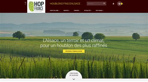 Comptoir Du Houblon by Hop Une Nouvelle Marque Et Un Nouveau Site Pour Le