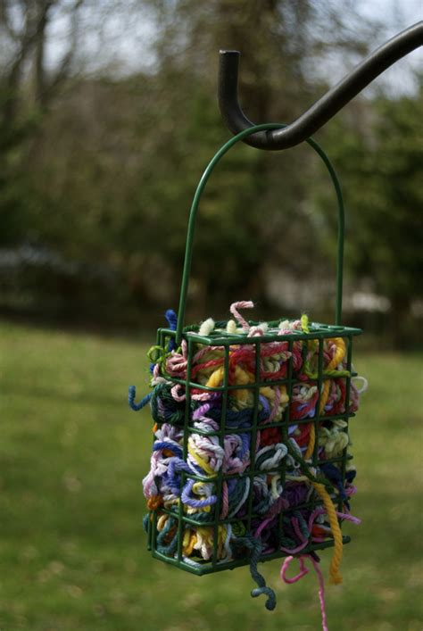 attract birds with homemade bird nesting materials hgtv