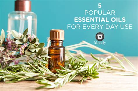 essential oils for everyday household using the best beginners guide book with 50 useful non toxic and time saving home made essential oils recipes essential oils book books 5 popular essential oils for everyday use in your house