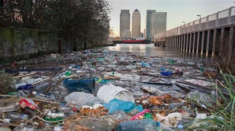 thames river london ontario pollution bbc earth how the river thames was brought back from