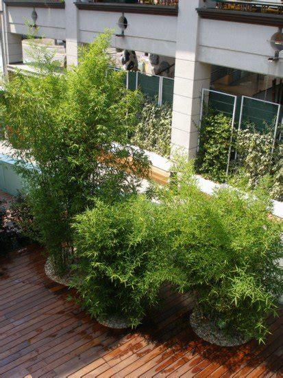 centro benessere giardini centro spa midorigiardini