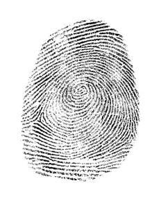 Biometric Art by Inspiration Linda Danaher