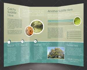 Tri Fold Poster Template by 50 Business Brochure Templates Template Idesignow