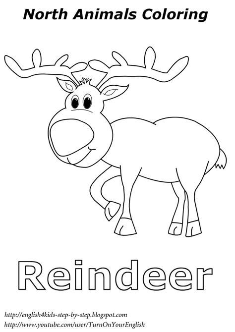 reindeer coloring pages preschool reindeer christmas coloring north animal coloring esl