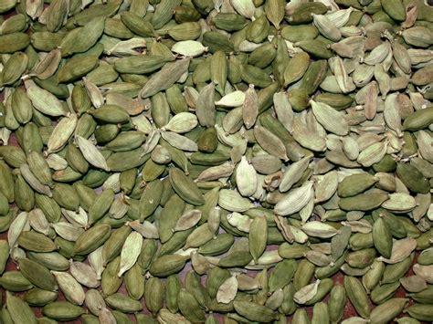 herb magic catalogue cardamom seeds