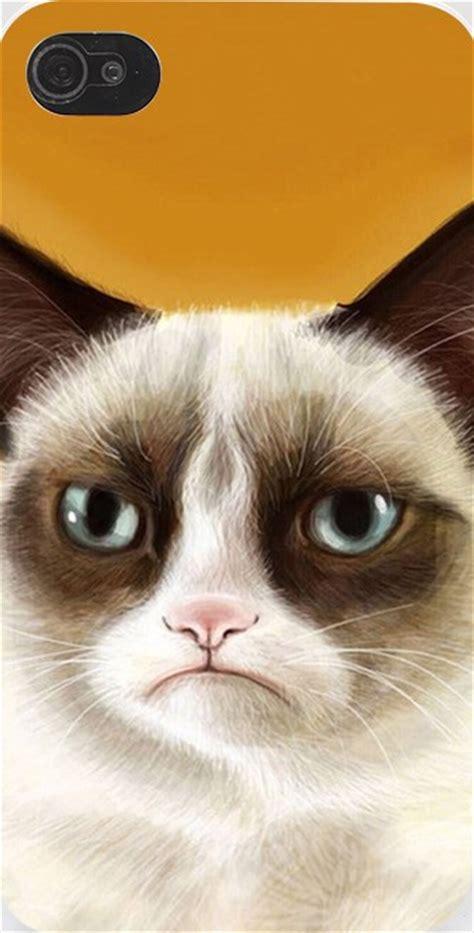 imagenes para fondo de pantalla gatos imagenes de gatos para fondo de pantalla para celular