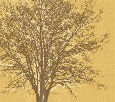Treehugger Updates On Levis Eco by Tree Hugger H1952pm Eco Value Murals Wall Murals