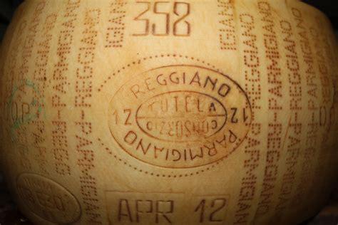 estera domian fotos gratis vino comida italia beber cerveza queso