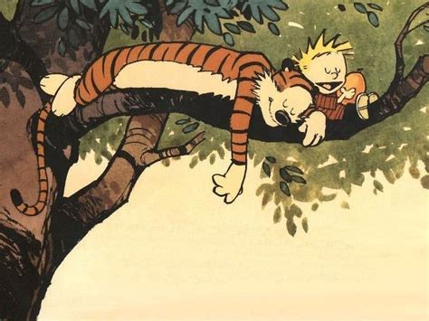 the days are just packed a calvin and hobbes collection textuality sunday funnies five favorite comic strips