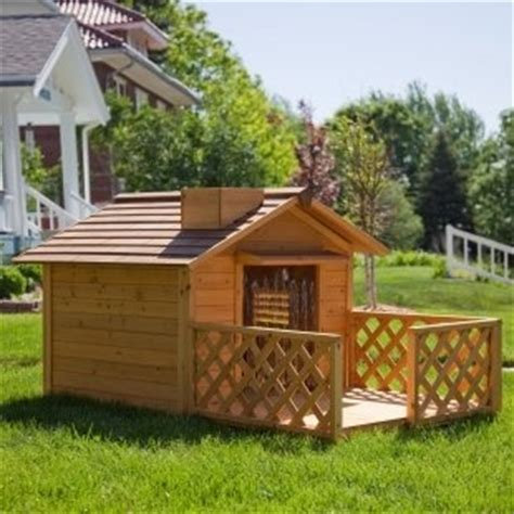 cute dog house cute dog house playscape outdoor indoor pinterest