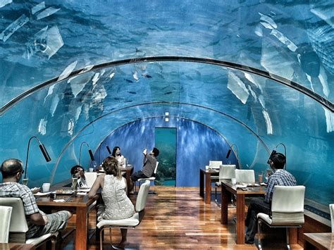 ithaa undersea restaurant 10 unique restaurants that should be on your bucket list
