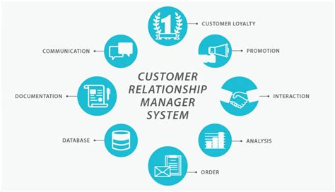 Zanna Set Crm 3 In 1 crm systems steps for crm system success
