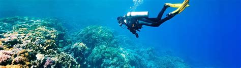 House Of Scuba by Scuba Diving Lessons And Tours