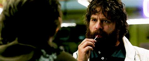 film lucu zach galifianakis film gif find share on giphy