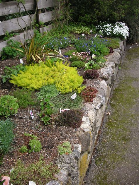 A Garden by How To Build A Rock Garden That Bloomin Garden