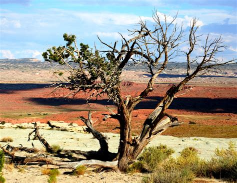 gorgeous images   american southwest budget travel