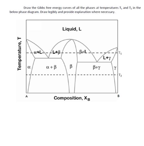 draw phase diagram solved draw the gibbs free energy of all the phase chegg