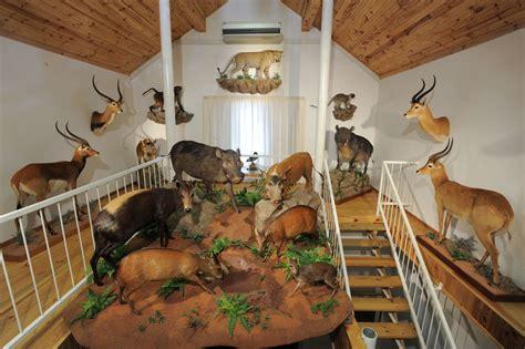 animal room trophy room flack writer conservationist