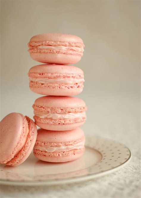 macarons pattern pink french macarons style sweet ca macarons frenchmacarons