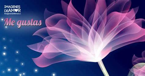 codigo html imagenes movimiento 7 im 225 genes de flores con movimiento y brillo para descargar