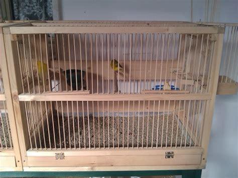gabbia per canarini misure costruire gabbia per uccelli tutta in legno curiosit 224 web