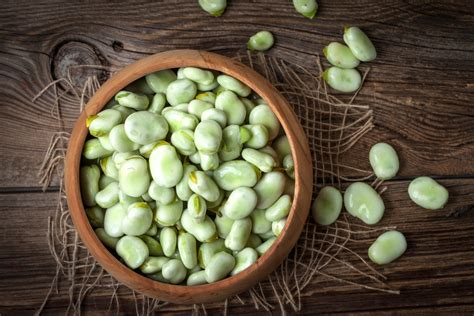 alimenti con poche fibre le fave proteine fibre e poche calorie melarossa