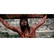 La Pasi&243n De Cristo Seg&250n Los Evangelios