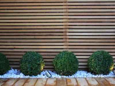 Immergrüne Pflanzen Sichtschutz 2396 by Small Garden Design Garden Ideas