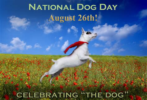 puppy day home august 26th is national day petswelcome