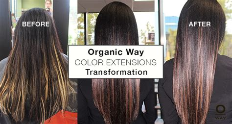 How To Choose Your Color Of Hair Extensions Lox Hair Extensions Hair Color Simply Organic