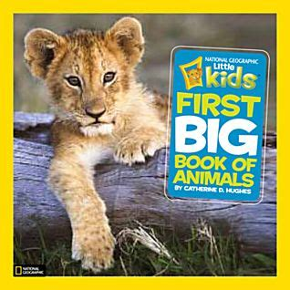 in search of sanctuary wildlife my books national geographic big book of animals