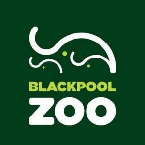 Printable Blackpool Zoo Vouchers | 25 off blackpool zoo discount code promo code