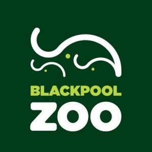printable vouchers blackpool 25 off blackpool zoo discount code promo code