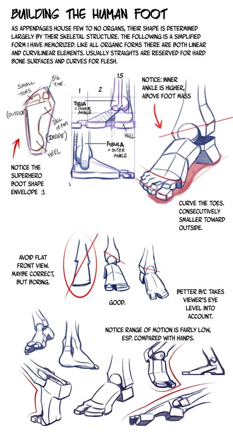 boot 2e hands feet legs anatomy reference updated art reference