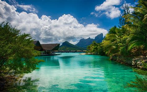 landscape nature sea resort palm trees bora bora