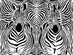 zebra head pattern in black and white pearlsofprofundity