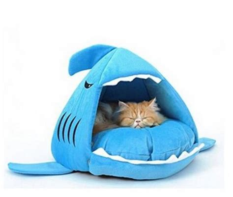 cute cat beds pinterest the world s catalogue of ideas