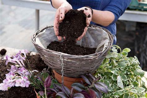 prepara una cesta colgante  plantas  interior