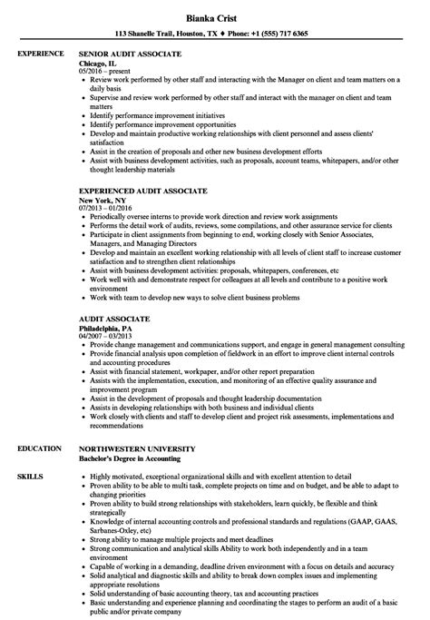 audit associate resume sles velvet