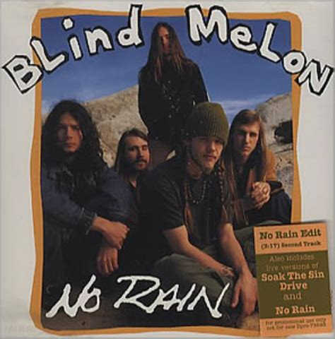 blind melon lp vinyl blind melon no records lps vinyl and cds musicstack