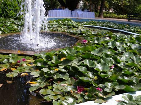giardino botanico cagliari italian botanical heritage 187 orto botanico dell universit 224
